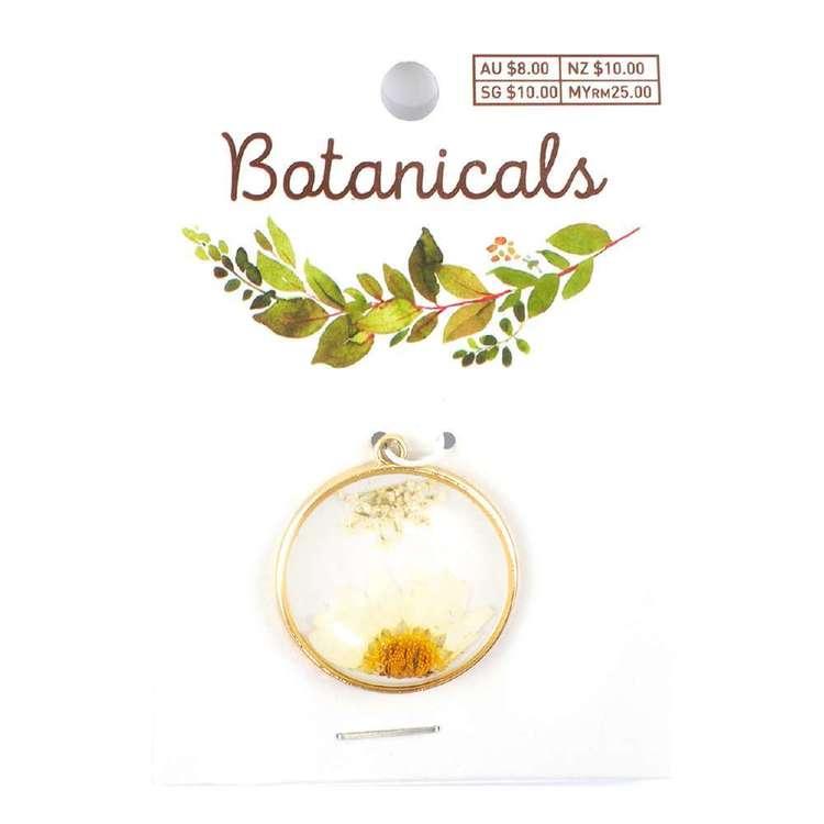 Botanicals Framed Round Pendant