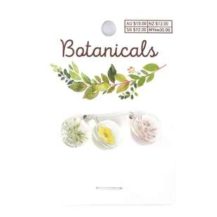 Botanicals Resin Sphere 3 Pack