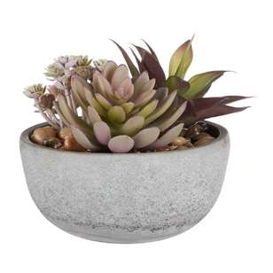 Bouclair Blushing Tones Mixed Succulent