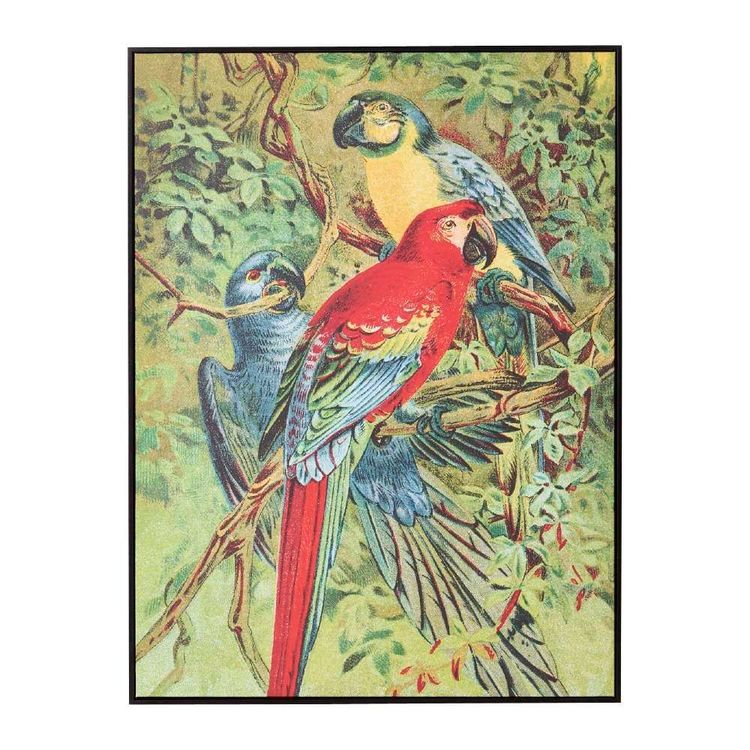 Tag Eclectic Treasures Vintage Parrot Framed Canvas Print