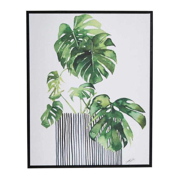 Tag Summer Thornton Swiss Plant Framed Canvas
