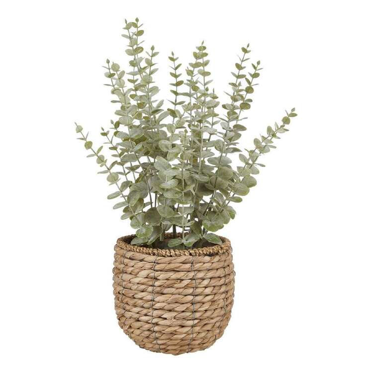 Bouclair Autumn Folk Eucalyptus In Rattan Basket
