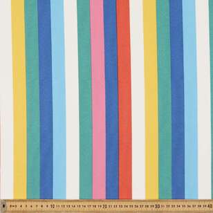 Remini Stripe Weatherproof Canvas