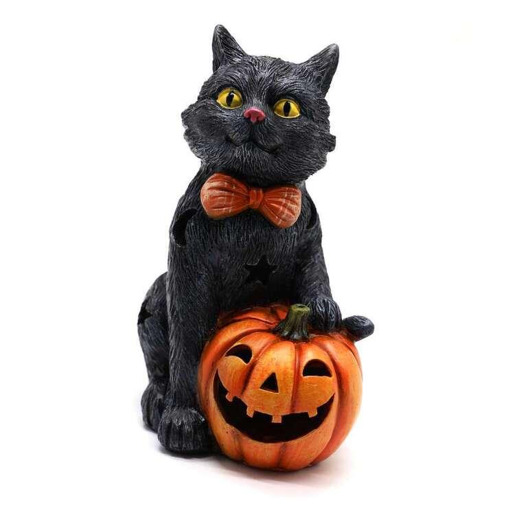 Spooky Hollow Black Cat With Pumpkin Decoration