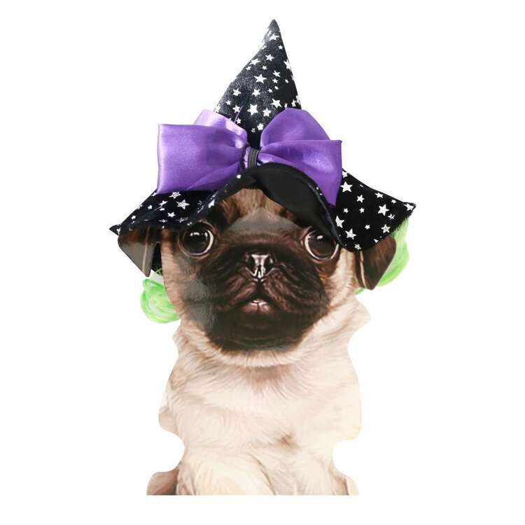 Spartys Witch Pet Headband