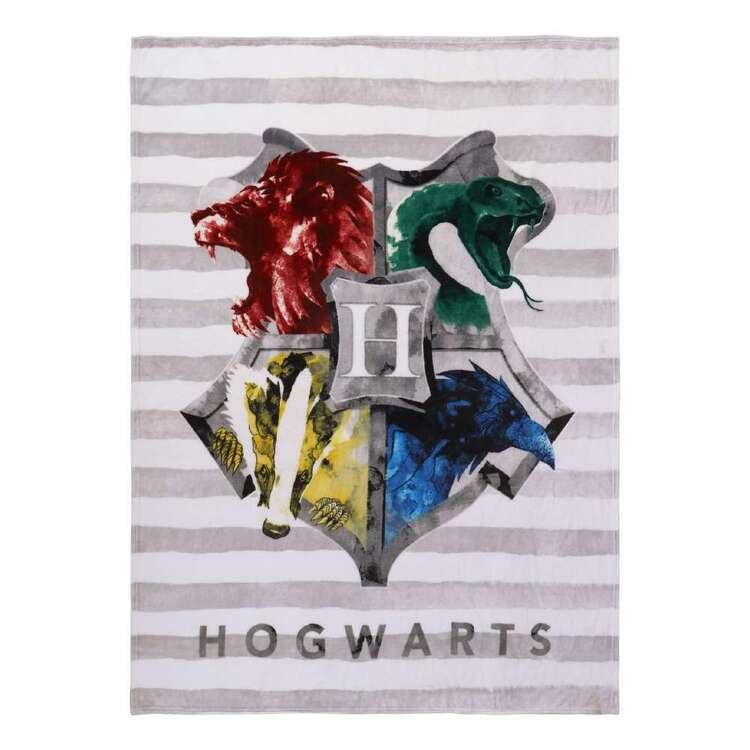 Harry Potter Wiz Throw
