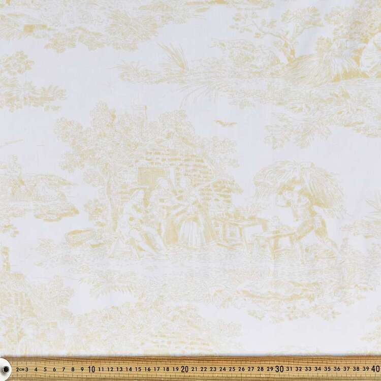 Toile Quilt Backing
