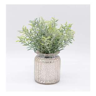 Living Space Flocking Herb Glass Pot