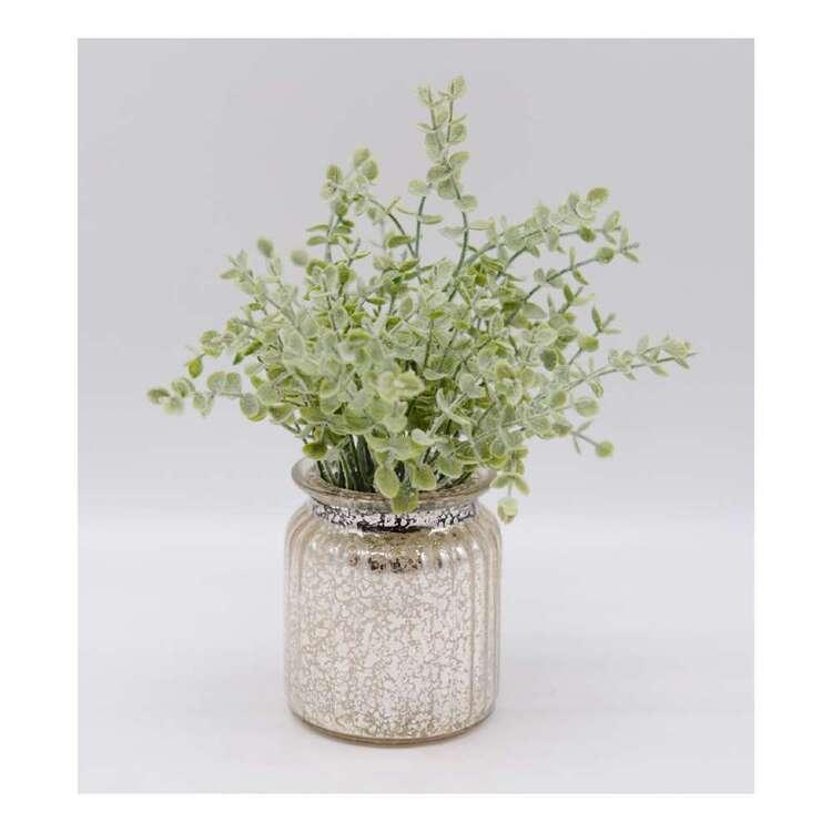 Living Space Eucalyptus Glass Pot