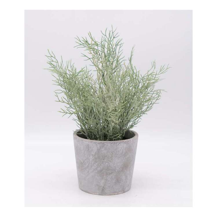 Living Space 20 x 28 cm Greenery In Pot