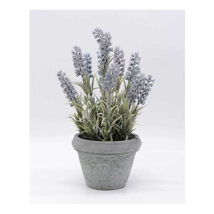 Living Space Flocking Lavender Pot 1