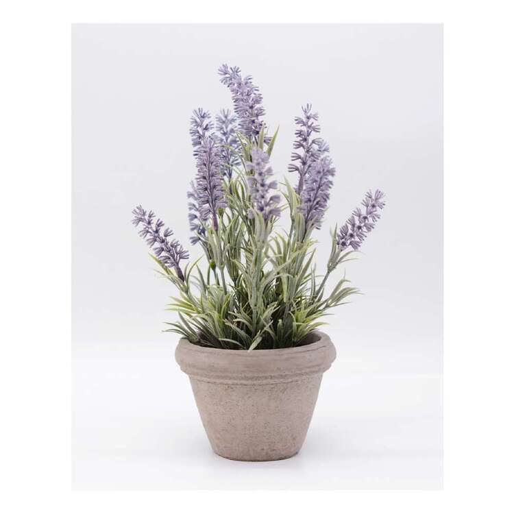 Living Space Flocking Lavender Pot 2