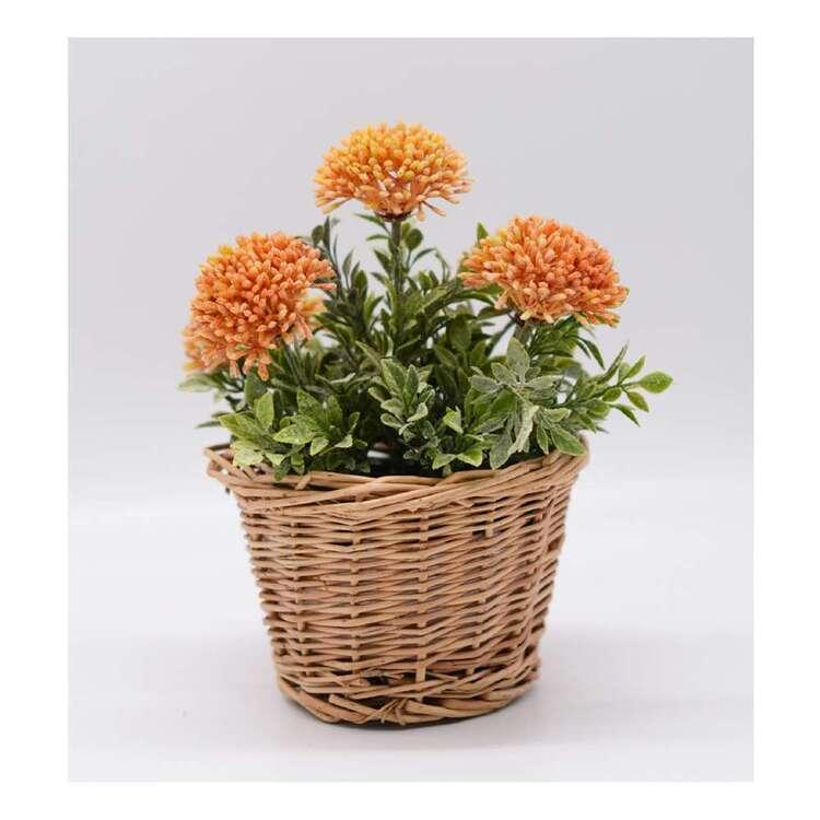 Living Space Hydrangea In Rattan Basket