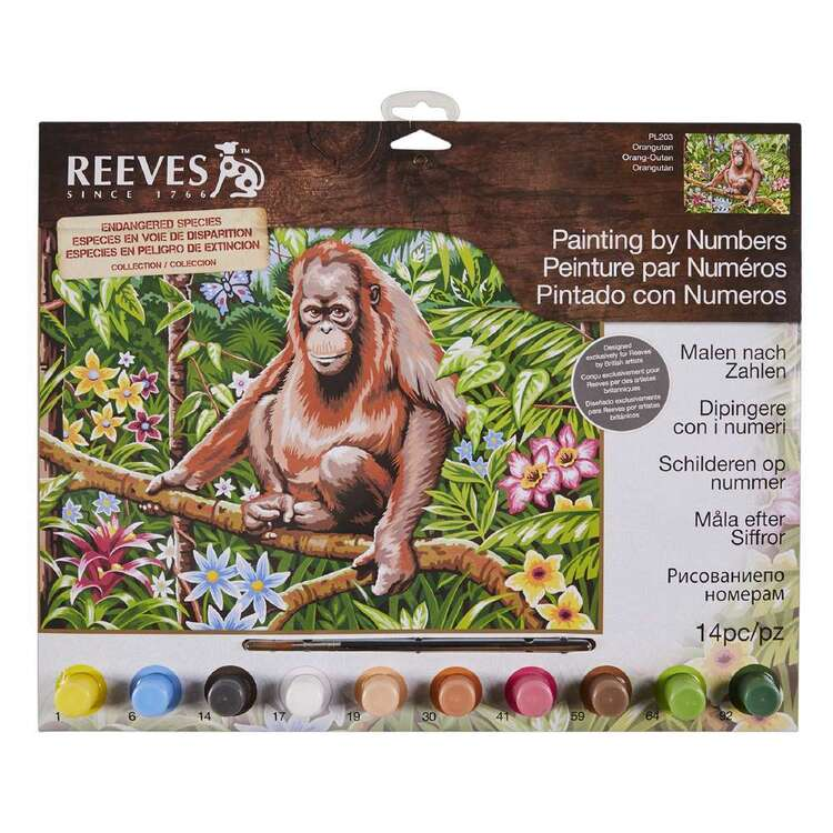 Reeves Large Paint by Numbers Orangutan
