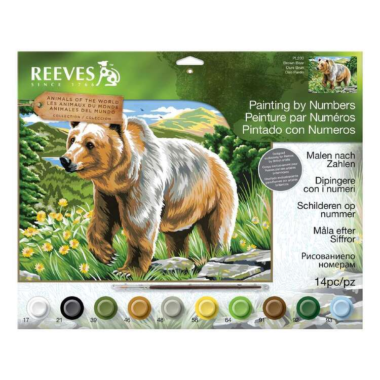 Reeves Paint By Number Large Brown Bear