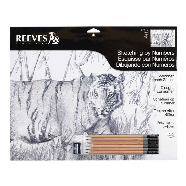 Reeves Sketching By Number Tiger Multicoloured Large