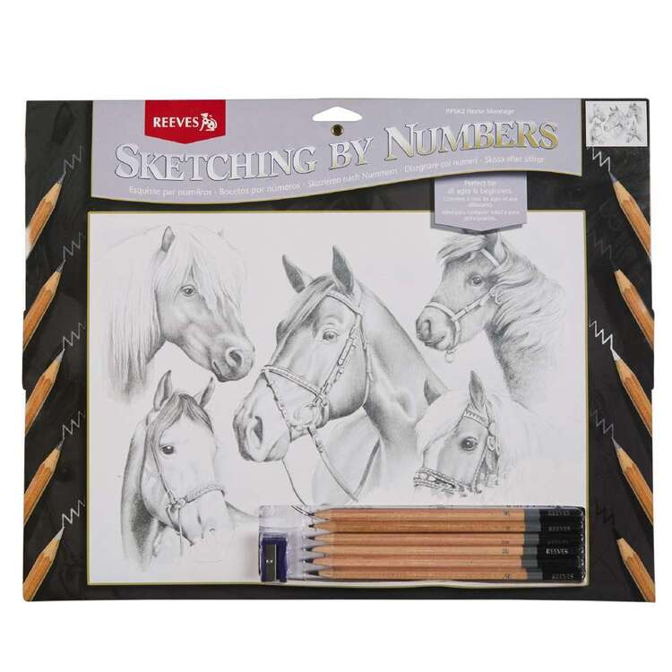 Reeves Large Sketch by Numbers Horse Montage