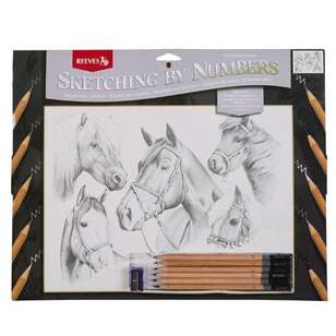 Reeves Large Sketch by Numbers Horse Montage