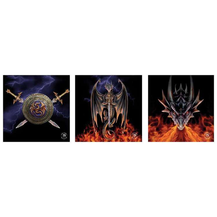 Anne Stokes Dragon Warrior 3 Pack Canvas