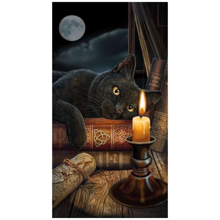 Anne Stokes The Witching Hour Beach Towel