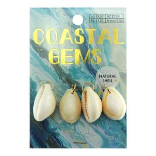 Coastal Cowrie Natural Shells 4 Pack