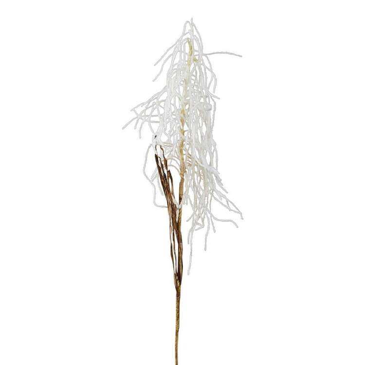 Reliance Dried Hanging Reed Spray