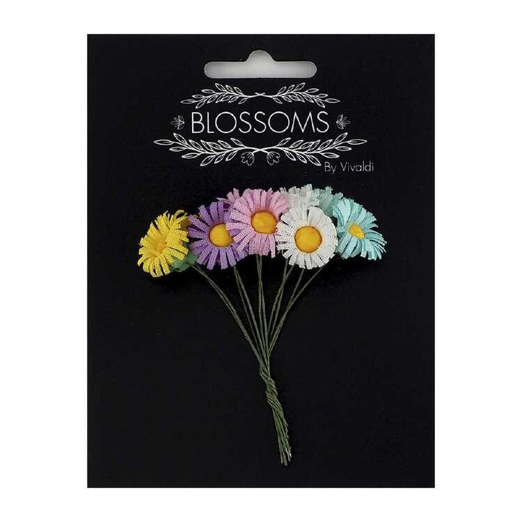 Vivaldi Blossoms 10 Pack Daisy Flower