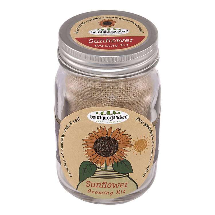 Boutique Gardens Sunflower Mason Jar Growing Kit