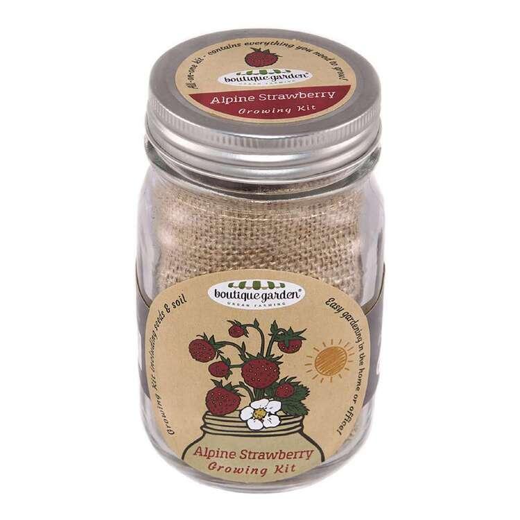 Boutique Gardens Strawberry Mason Jar Growing Kit