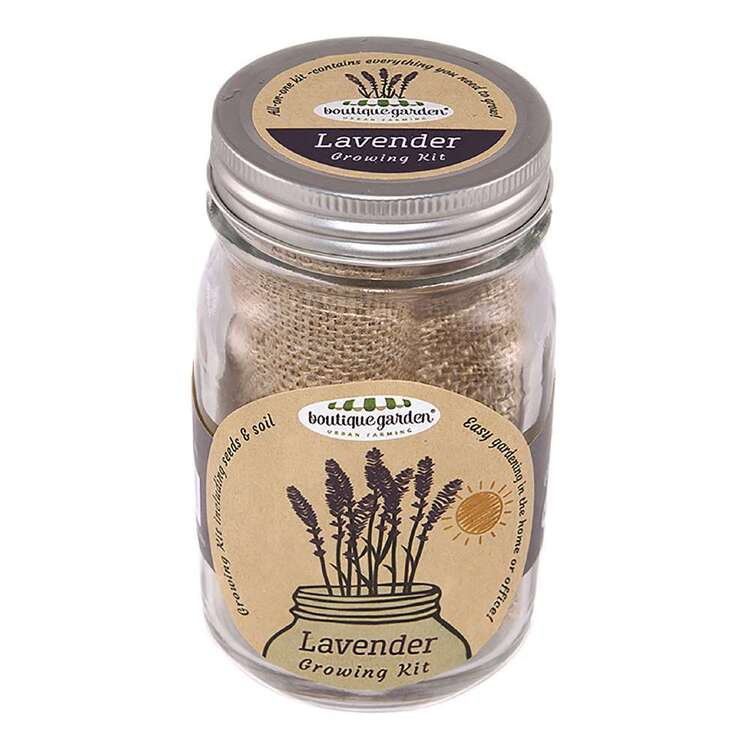 Boutique Gardens Lavender Mason Jar Growing Kit