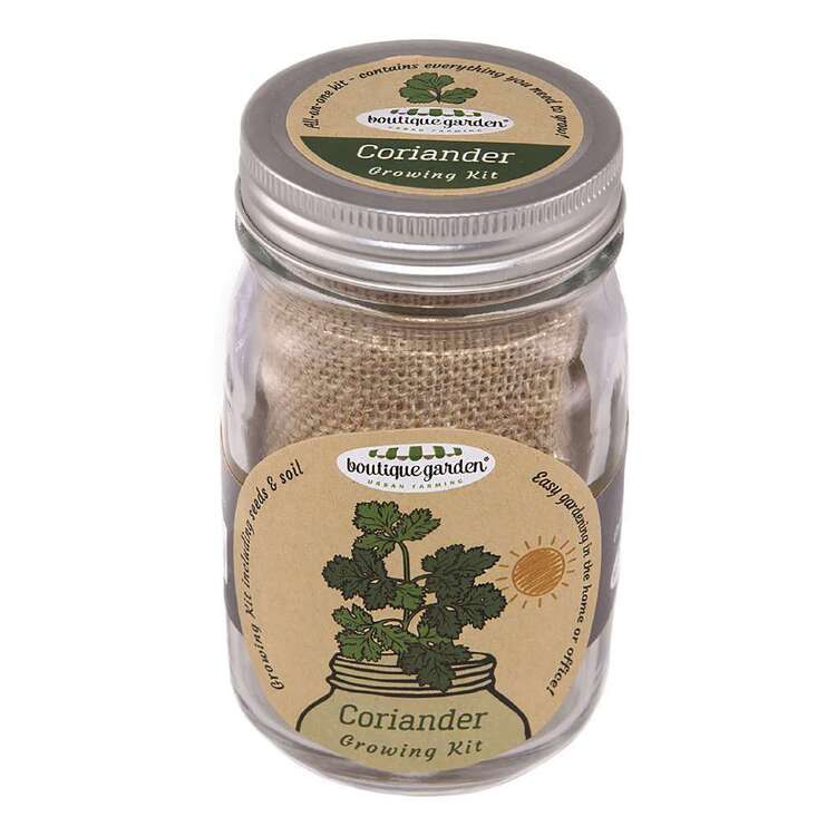 Boutique Gardens Coriander Mason Jar Growing Kit