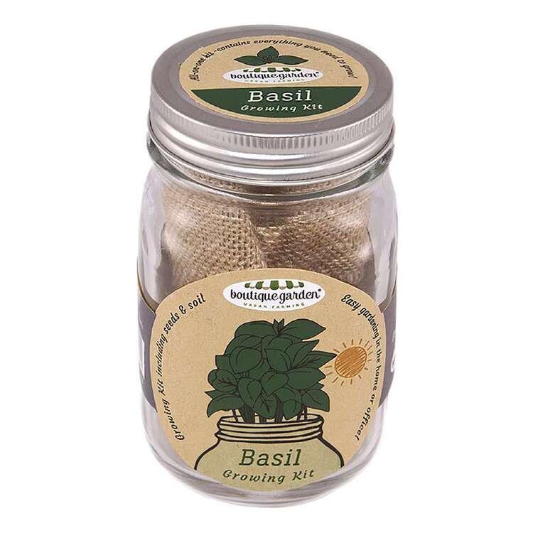 Boutique Gardens Basil Mason Jar Growing Kit
