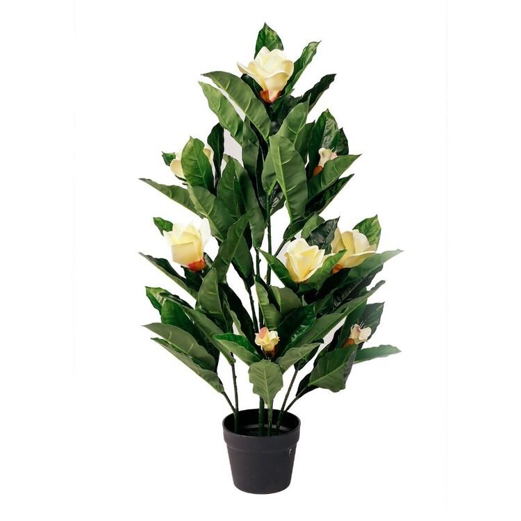 Botanica Artificial Magnolia Plant
