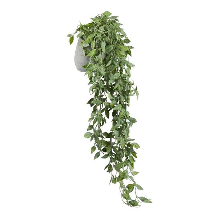 Living Space Shelf Hanging Plant