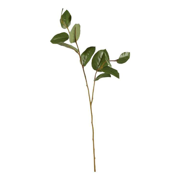 Salal Leaves Spray
