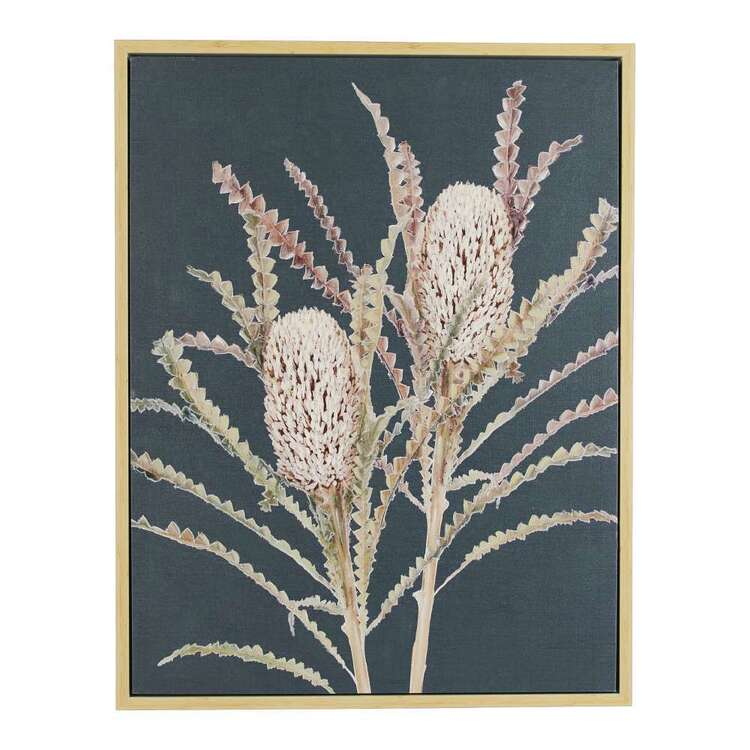 Banksia Framed Canvas Print