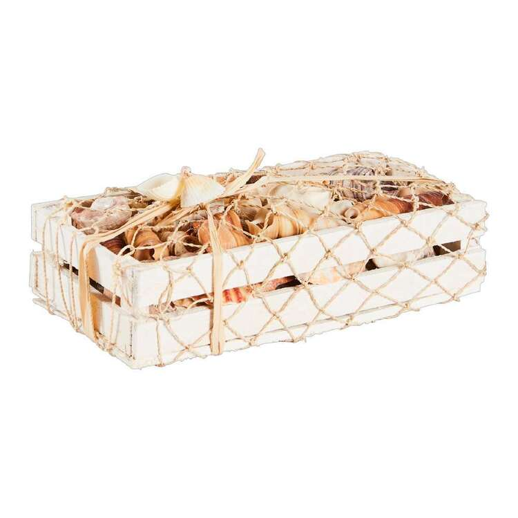 Radiance Boxed Shells With Netting Ornament