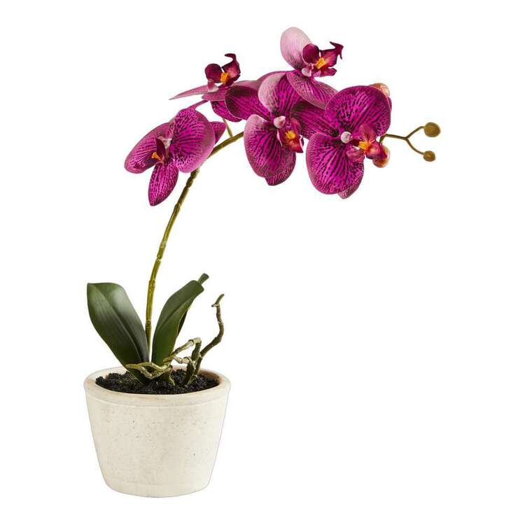 Emerald Hill Artifical Orchid