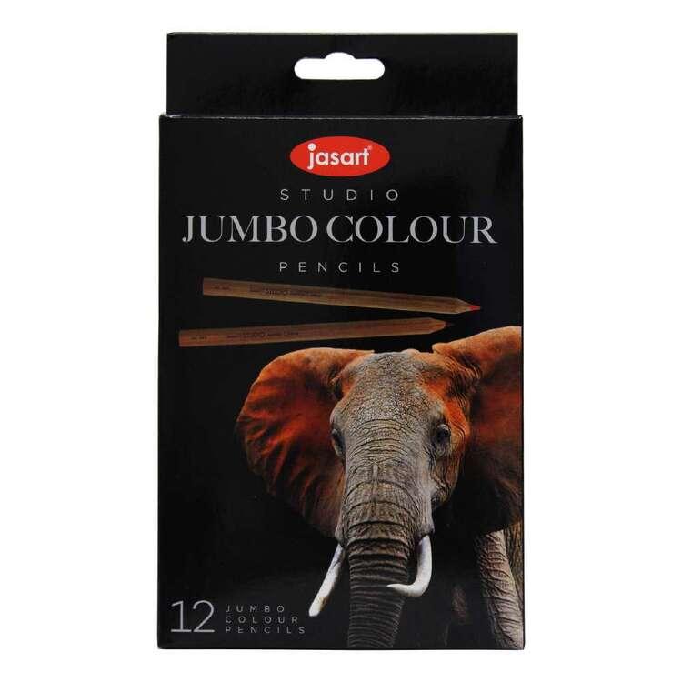 Jasart Studio 12 Pack Jumbo Colour Pencil Set