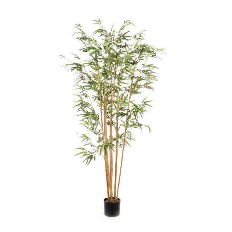 Botanica 180 cm Jumbo Bamboo Plant