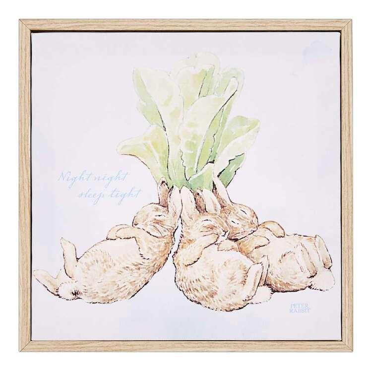 Peter Rabbit Sleeping Framed Canvas Print