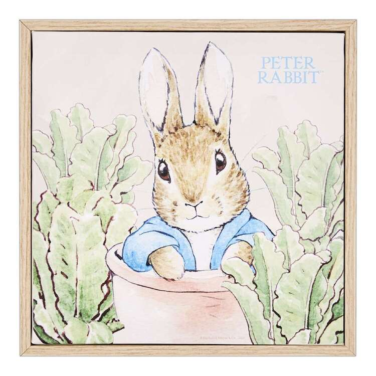 Peter Rabbit Garden Framed Canvas Print