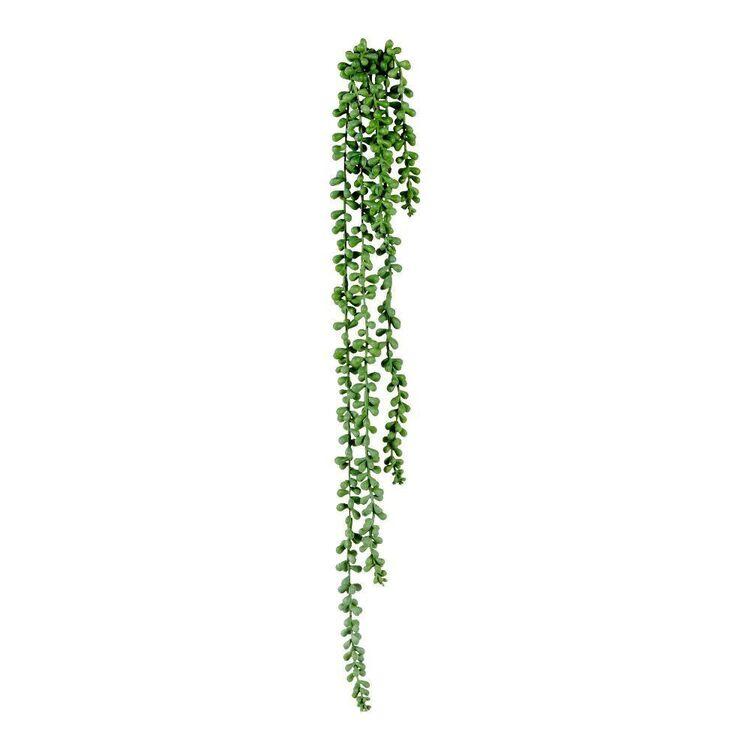Living Space 71 cm Beans Hanging Bush