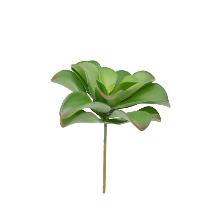 Living Space 14.5 cm Succulent Stem #1