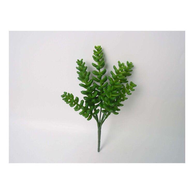 Living Space 22.5 cm Succulent Stem