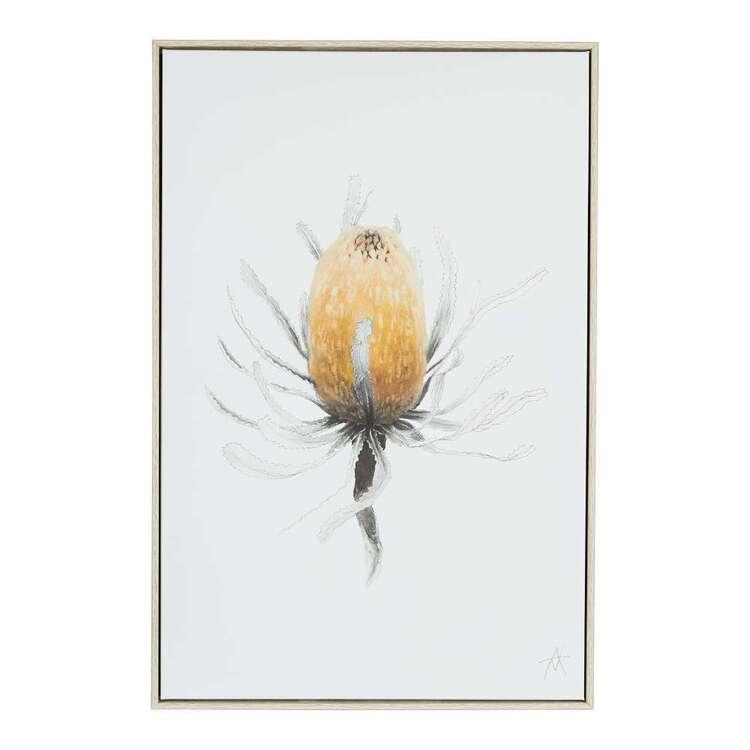 Antony Makhlouf Banksia Framed Canvas