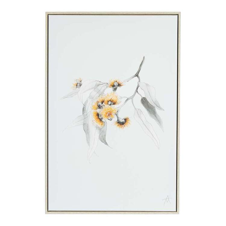 Antony Makhlouf Eucalyptus Framed Canvas