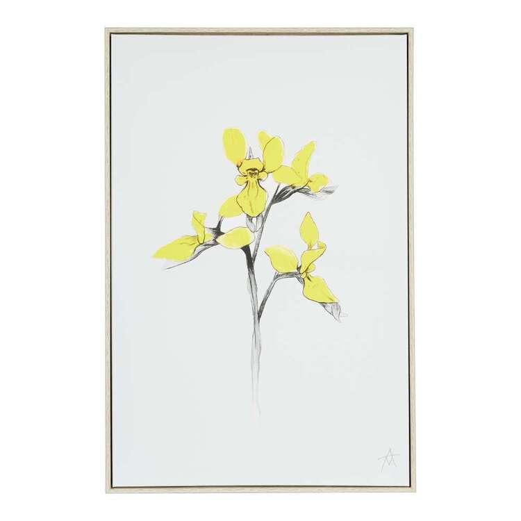 Antony Makhlouf Bee Orchid Framed Canvas