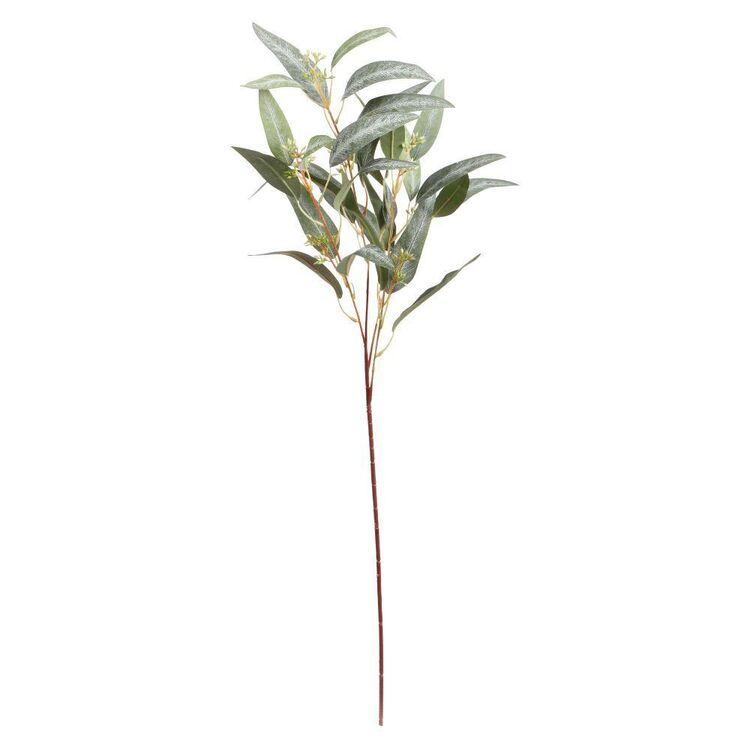 80 cm Eucalyptus Branch #2