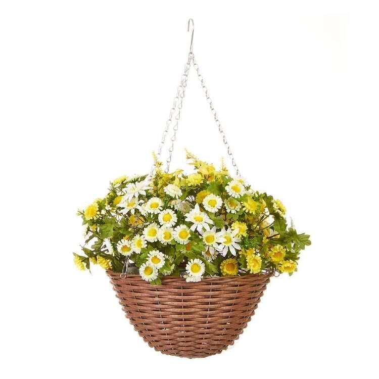 Botanica Bellis Wicker Hanging Basket